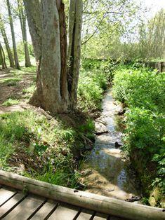 A peu per Gallecs Homeland, Garden Bridge, Trekking, Oriental, Outdoor Structures, Urban, Nature, Plants, Barcelona