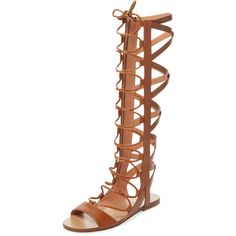 Sigerson Morrison Women's Bright Leather Gladiator Sandal - Medium... ($289) ❤ liked on Polyvore featuring shoes, sandals, medium brown, gladiator sandals, brown flats, brown leather flats, brown leather sandals and lace up flat sandals