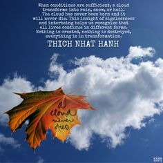 Leaf Quotes, Buddhist Quotes, Thich Nhat Hanh, Everything, Insight, Rain, Leaves, Calligraphy, Clouds