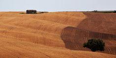 Toscana, foto Dario Ballabio