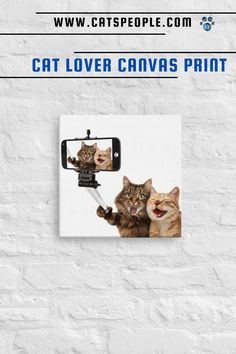 Add a splash of cat humor to your home or office decor with this unique canvas print. A funny design of cats taking a selfie with goofy expressions, that cat owners and cat lovers will fall in love with. The vivid, fade-resistant print is purrfect for cat parents to add a little cat flair to their own space. #catloverhomedecor #catdecor #funnycat #catselfie #catcanvas #catmomdecor #cathomedecor Cat Design, Funny Design, Cat Lover Gifts, Cat Lovers, Cat Selfie, Cat Decor, Top Gifts, Office Decor, Funny Cats