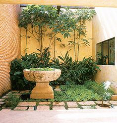 A courtyard garden: Create a garden within a nook, bringing simple shapes and harmonious plantings for a serene visual effect.