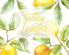 Lemon Watercolor Clipart. Hand painting fruit, Lime, kitchen, Food wall art. Digital png, Wedding DIY invites, scrapbooking