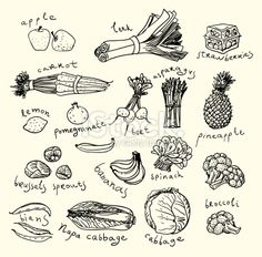 stock-illustration-21466910-healthy-food-sketch-style.jpg (380×375)