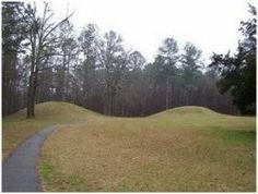 """I live 2 miles north of the Trace. Eary but beautiful place. The """"Mysterious Barren Pathway"""" known as the Natchez Trace is host to oodles of ghastly tales, from Deep in the South's most fabled mighty and..."""