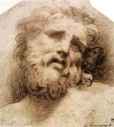 Testa del Laocoonte  Parmigianino