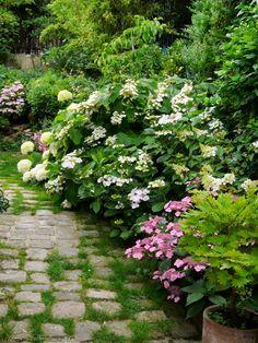 Visiter un jardin anglais luxuriant . Natural Garden, Lush Garden, Shade Garden, Dream Garden, Garden Paths, Garden Landscaping, Garden Cottage, Garden Projects, Garden Inspiration