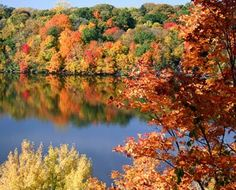 Fall photo in Mercer, Wisconsin. September and October = incredible fall colors (colorama)