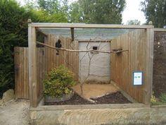 how to build an indoor bird aviary #howtobuildanaviary
