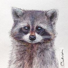 685 отметок «Нравится», 30 комментариев — Nadia (@nadiacoolrista) в Instagram: «My #raccoon is done, so let's guess what is the next animal? #animal #animallover #painting…»