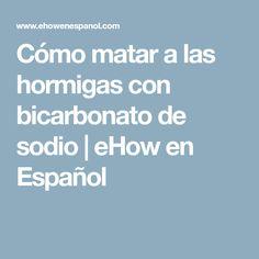 Cómo matar a las hormigas con bicarbonato de sodio   eHow en Español