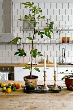 19 идей для хипстерской кухни: home_and_garden