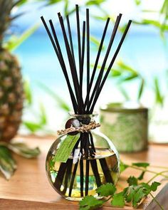 Tommy Bahama classic reed diffuser $45