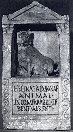 Roman tombstone to a dog.  To Helena, my pet, my life, incomparable, well deserving. via @stephenjenkin