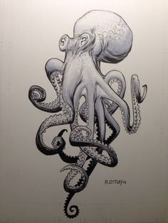 Octopus by RyanOttley.deviantart.com on @deviantART
