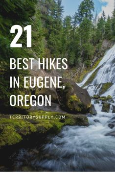 While places like Portland, the Columbia River Gorge, and the Oregon Coast get all the hype, Eugene is an underrated outdoor hub. Here's our 21 favorite hikes in Eugene, Oregon. Oregon Trail, Oregon Coast, Oregon Camping, Waldo Lake, Oregon Territory, Oregon Waterfalls, Oregon Living, Waterfall Hikes, Pacific Crest Trail