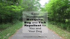 I love the Spring, Summer and Fall and I love hiking in the woods with my German Shepherd. But what I don't love are the mosquitoes, other bugs and ticks and I especially do not like mosquito and tick preventative poison. Most insect repellents out there are loaded with toxic chemicals, including the pesticide DEET, …