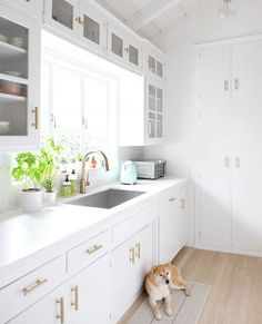 Home tip of the day: Want a quick kitchen makeover update without breaking the bank? Change out your hardware! We love how @hellohoku revamped her 1950's kitchen with a bit of white paint and brass hardware. A sweet pup makes the scene complete, of course.