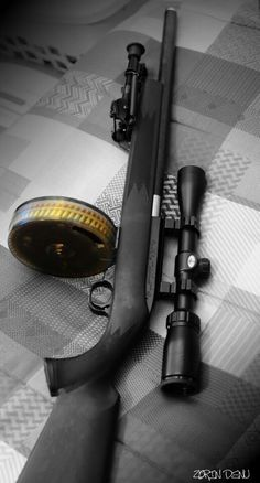 .22 rifle. This has fun written all over it! Oh hell yeah!!! :) @Michael Dussert Dussert Dussert Schliewe please??????
