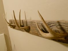 Easy DIY tips on building your own coat racks - decoration worldwide - Style and More - All kinds of trendy ideas Deer Antler Crafts, Antler Art, Deer Antlers, Hunting Crafts, Diy Coat Rack, Coat Hooks, Coat Hanger, Ranch Decor, Man Of The House