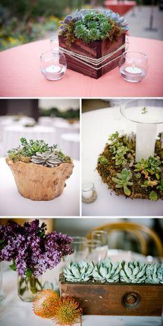 Flores para bodas: Suculentas