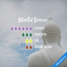 Blissful Breeze - Essential Oil Diffuser Blend