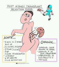post kidney transplant rejection signs -Things I Now Have to Watch For. Med Surg Nursing, Ob Nursing, Funny Nursing, Nursing School Notes, Nursing Schools, Nursing Information, Medical Surgical Nursing, Nursing Tips, Nursing Programs