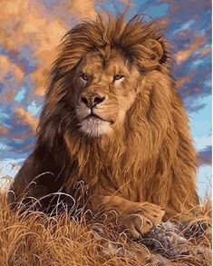 Items similar to Lion Paint by Number Kit Jungle King painting Canvas, Animal DIY Painting on canvas Home decor wall art for adult Craft Gift on Etsy King Painting, Painting Art, Amazing Animals, Les Fables, Paint By Number Kits, Lion Art, Canvas Home, Diy Canvas, Wall Canvas