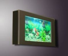 Tell your kids there is new TV! Build an aquarium in your wall
