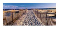 """""""Pathway to the Beach"""" - Beach and Coastal Views posters and prints available at Barewalls.com"""