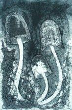 Fungi II.Collagraph