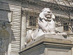 New York Public Library - New York City, New York - 'Fortitude' Lion by Edward Clark Potter & Piccirilli Brothers