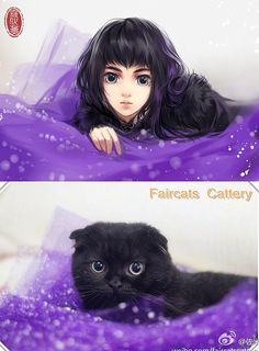 Artist draws adorable kittens as anime girls