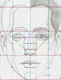 * Head & Face & Skull *12