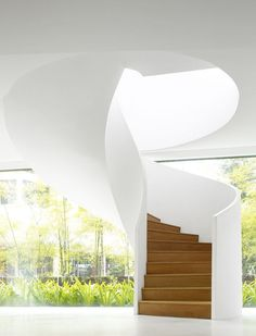 Stairway to Heaven. Amazing Architecture, Architecture Details, Interior Architecture, Staircase Architecture, Singapore Architecture, Building Architecture, Modern Staircase, Staircase Design, Spiral Staircases