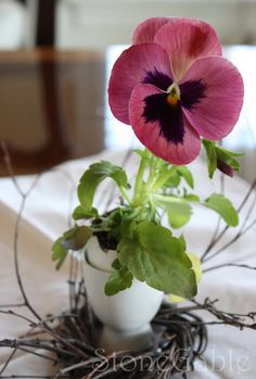 Before you plant those pansies in your flower bed, crack (very carefully!) a few eggs, fill with a spoonful of soil, a single flower, and a few drops of water for a pretty spring centerpiece. Check out StoneGable's super-easy instructions for Pansies In Eggshell Pots.    @stoneg