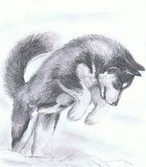 Wonderful All About The Siberian Husky Ideas. Prodigious All About The Siberian Husky Ideas. Animal Sketches, Animal Drawings, Art Sketches, Pencil Drawings, Art Drawings, Husky Tattoo, Husky Drawing, Baby Huskies, Siberian Huskies