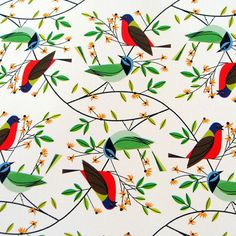 Charley Harper gift wrap!  Available at Fat Finch!