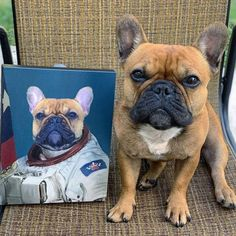custom dog family portrait We all love our pets! Show off that love with a custom pet portrait canvas. Our modern art style will capture all of your pets beloved details. Check out our FAQ below for pet portrait tips so you can make sure you capture the perfect picture of Fido!