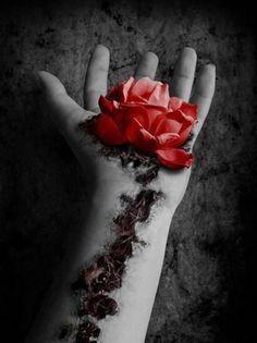 #rose #beauty #tattoo