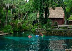 Juniper Springs in the Ocala National Forest. One of my favorite places on earth.  I have spent every Thanksgiving of my life camping there