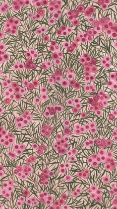 Hand-painted Australian native floral designs for quilting / bolt fabric | Natalie Ryan Textile Design & Illustration