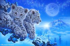 "Chat 2"" Snow Leopards 27.3 × 40.9cm, Acrylic on canvas, 2013 Gallery Bigcats2 - Art of Kentaro Nishino"