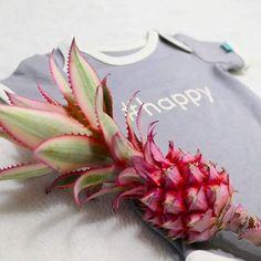 Baby romper lilac gray. This pink pineapple perfectly matches our lilac gray romper! Seriously considering adding some pink to the collection  What do you think?   P.s. have you ever seen one before? It was my first   .  .  .  .  .  #binki #romper #babyclothes #lilacgray #pinkpineapple #easyfastening #easywear #organiccotton #fairfashion #sustainablefashion #babystyle #babyoutfit #babyshowergift #bodysuit #cutebabyoutfit #dutchdesign #amsterdam #nomoresnaps #babymusthave