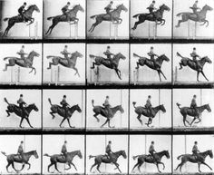 Image: Eadweard Muybridge - Man and Horse jumping, from ''Animals in Motion'' by Muybridge, London, published 1907 (b/w photo)