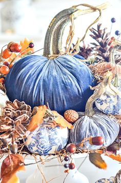 Create one spectacular fall arrangement this year and use velvet pumpkins and a bit of chinoiserie! Blue Fall Decor, Fall Home Decor, Velvet Pumpkins, Fall Pumpkins, Fabric Pumpkins, Chinoiserie, Thanksgiving Decorations, Christmas Decorations, Thanksgiving Tablescapes