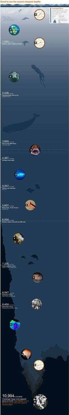 Ocean trench: Take a dive 11,000m down. Scroll to see the ocean's deepest depths - #Interactive #Infographic