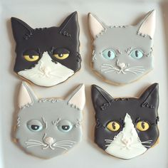 CAT w/ funny face cookies ★ More on #cats - Get Ozzi Cat Magazine here >> http://OzziCat.com.au ★