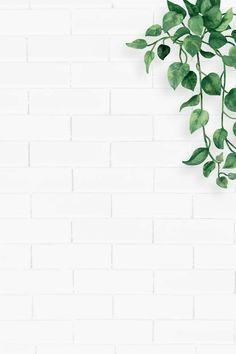 Flower Background Wallpaper, Plant Wallpaper, Framed Wallpaper, Green Wallpaper, Wallpaper Backgrounds, White Wallpaper For Iphone, Greenery Background, Vintage Flower Backgrounds, White Brick Wallpaper