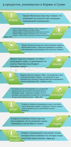 ИНФОГРАФИКА: 9 продуктов, упомянутых в Коране и Сунне